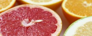 イアトリズム事典 知っておきたい『食品と栄養』で食品成分表 果実類 を彩る フルーツ が身を寄せる風景