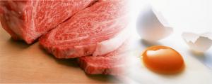 イアトリズム事典 知っておきたい『食品と栄養』で食品成分表 肉類・卵 に登場する 牛肉と卵 のコラボ像