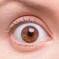 イギリス人と思われる婦人のショックに満ちた眼差しとそれを形作る白眼・黒目・眼瞼・まつ毛・眉の様子