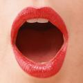 今にも何かを銜えだしそうな形良く開かれた女性の口唇と微かに見える齧歯に紅のルージュが濡れ映える情景