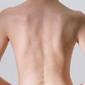 女子高生の若い肌に透けるストレートな背骨と肩甲骨が全て見てとれるブラジャーを外した生のバックスタイル
